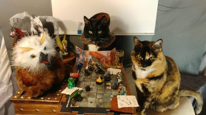 three cats in cosplay around a tabletop game, @cat_cosplay