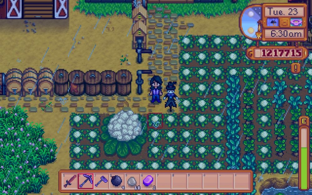 A screenshot of a Stardew Valley farm.
