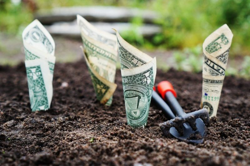 Photo of dollar bills loosely rolled up and stuck in soil like plants. Image From TheDigitalWay on Pixabay