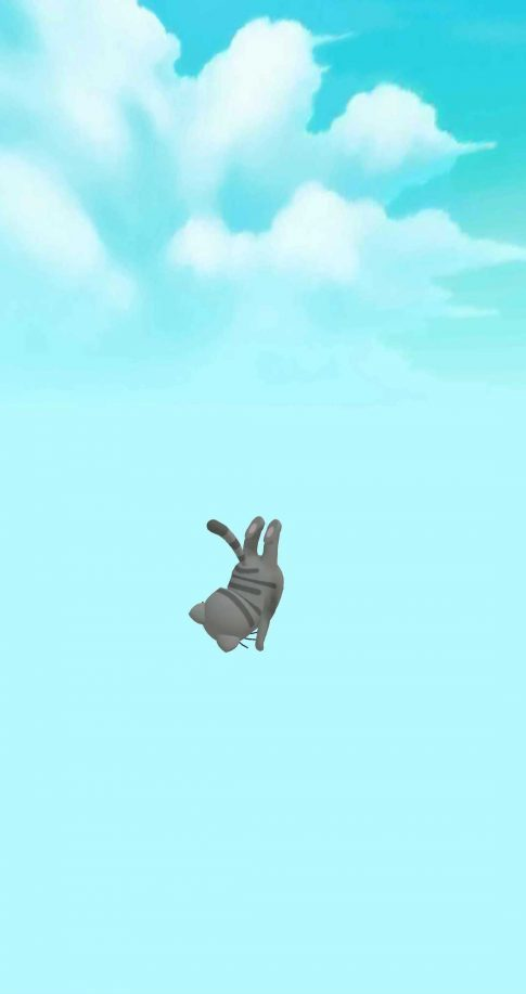 A screenshot of Aquapark.io showing a gray cat falling through the sky.