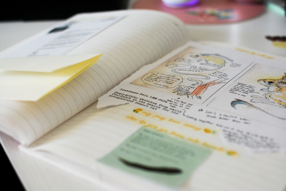 A photo of the interior of a Field Guide to Memory journal, showing papers taped in with drawings of the Pronghorned desert rat.